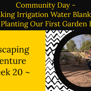 Agriscaping Week 20 - Community Event, Making Water Blankets and Planting Raised Beds