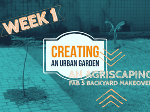 Agriscaping Week 1: Our Backyard Is Getting a FAB5 Agriscaping Makeover!