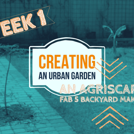 FAB 5 Week 1: Our Backyard Is Getting a FAB5 Agriscaping Makeover!
