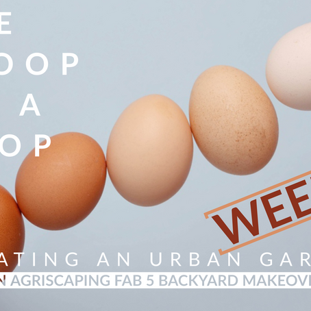 Agriscaping Week 3 - The Scoop on a Coop...