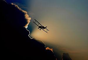 flygtur .jpg