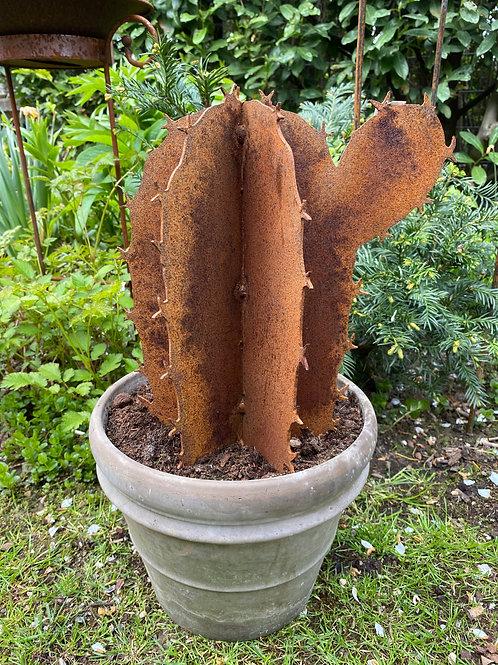 Edelrost - Kaktus lang
