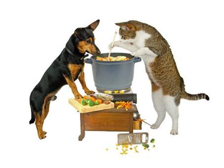 Cães / Gatos – Dieta natural crua / cozida
