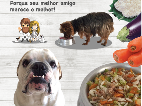 Posso oferecer comida para o meu cão? SIM! Mas com cuidado!