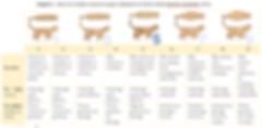 tabela de estrutura corporal gatos.png