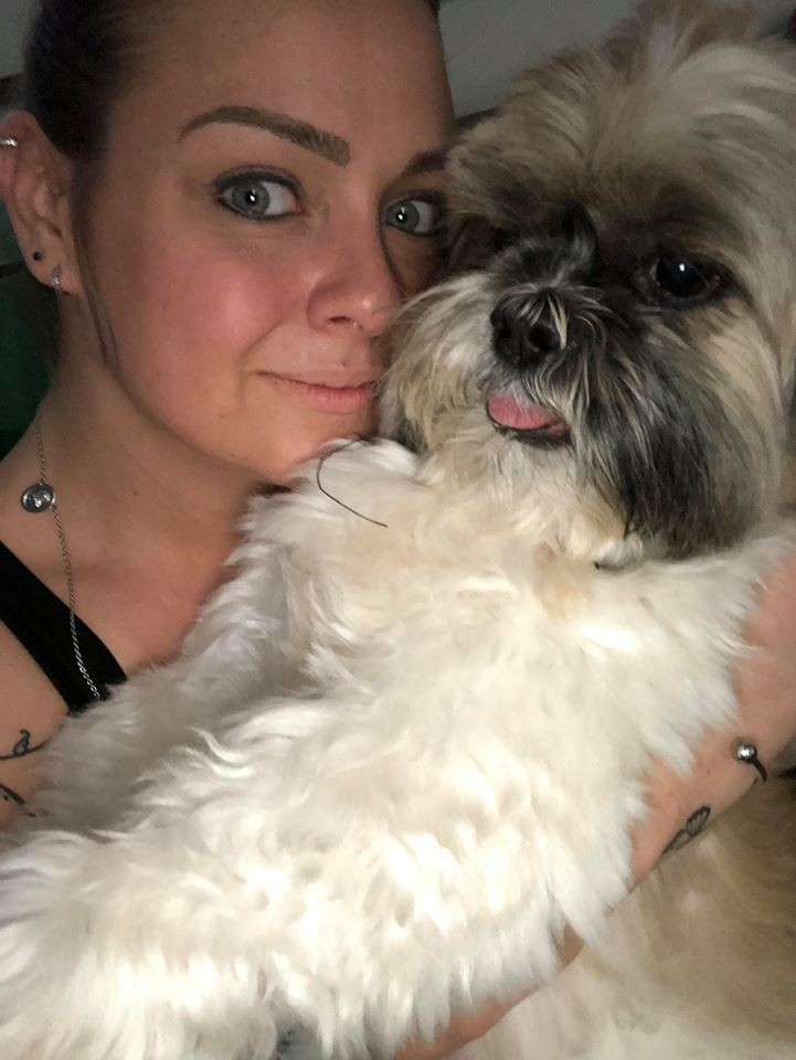 cliente Pet - paciente - animal natural - an 2