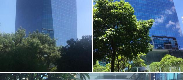 Schaefer Yachts reforça presença em São Paulo com escritório na capital
