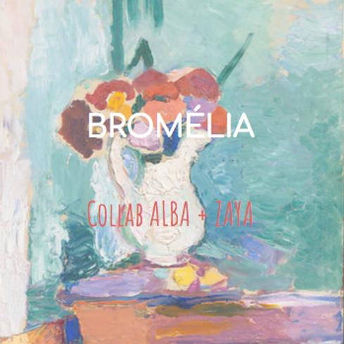 CAIXA BROMÉLIA