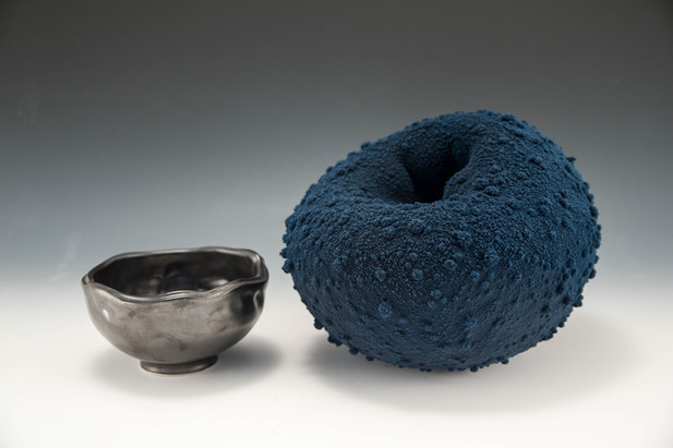 Bowl and Toroid