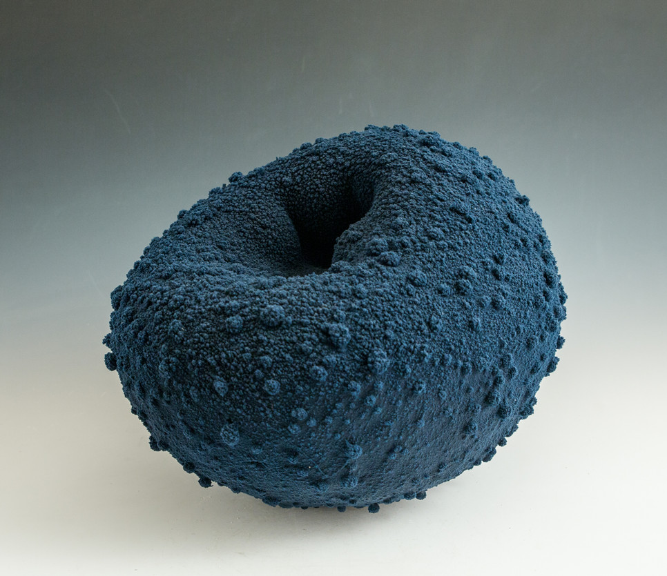 Blue Toroid