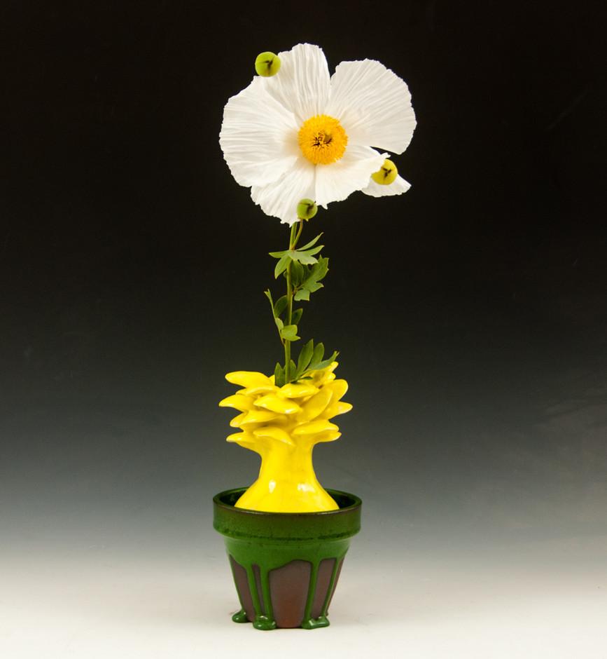 Flower Pot #5