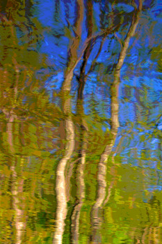 Reflection 55.jpg