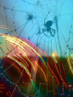 Spinning Hues