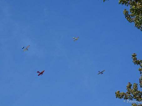 403 Honour Flight Pays Tribute Over Sarnia