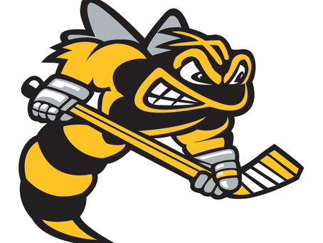 Two Sting Prospects Invited To Hockey Canada Under-17 Development Camp