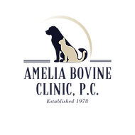 ABC Logo_trsp bg 400x400.png