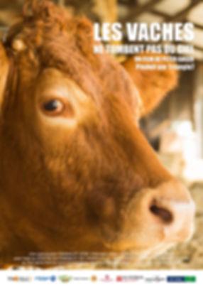 affiches les vaches .jpg