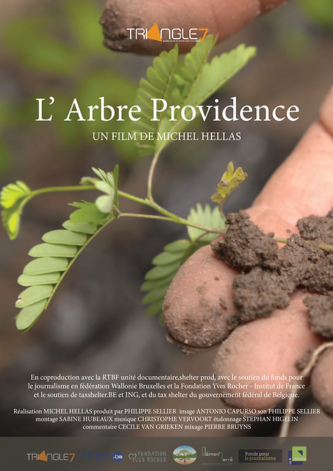 affiches arbre providense.png