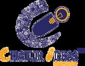 Chatur-Ideas-Logo-png-file.png