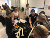 Orthopaedic Surgeon Charlotte Allen and trainee Jessica Mowbray guide students in the art of nailing, while surgeon Terri Bidwell takes on the most important role - coffee orders