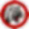 logo ai_edited_edited_edited_edited.png