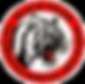 logo ai_edited_edited_edited.png