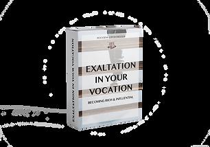 Exaltation in Your Vocation mockup.png