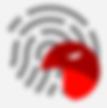 CYBERHAWK LOGO.png