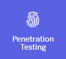 penetration testing.PNG