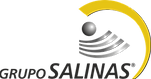 Grupo_Salinas-logo.png