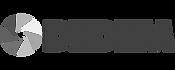logo-dedem_edited.png