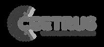 Logo_Ceetrus_2018_edited.png