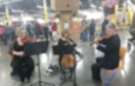 Amazon-Trio-1-24-15.jpg