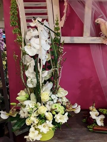 Composition orchidées blanches