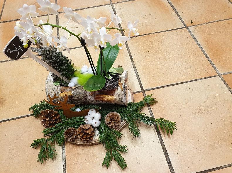 Montage orchidée