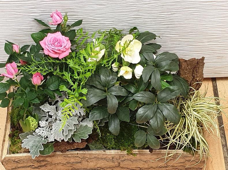Jardinière extérieure petite