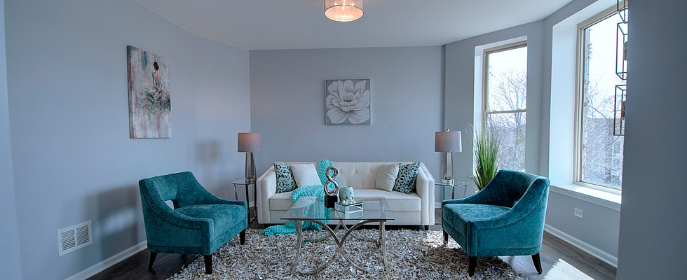 Living Room in Oak Park designed by MRM Home Design.jpg
