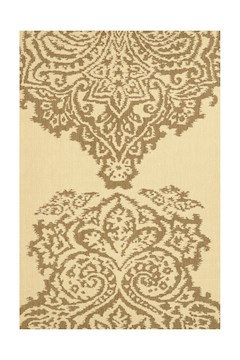 5'x8'-$60 outdoor/indoor rug