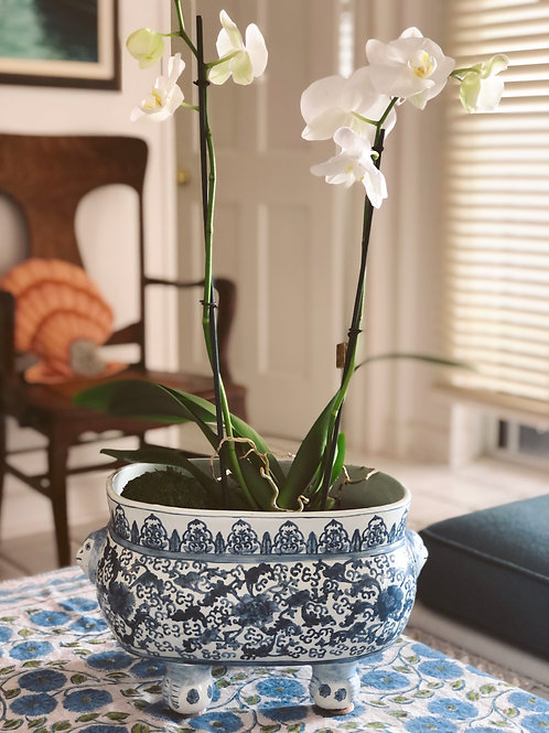 Chinoiserie Footed Porcelain Planter