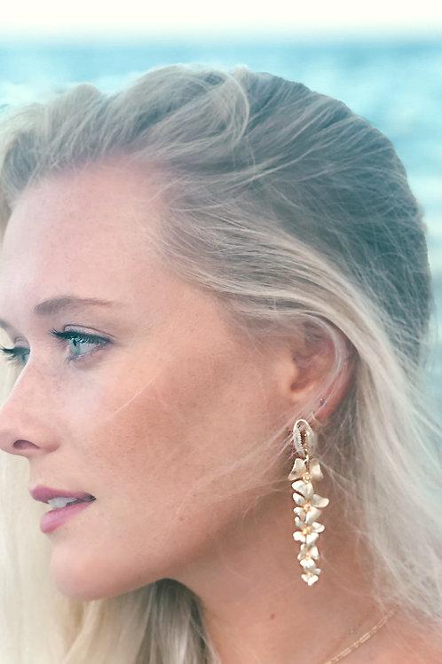 Cowrie Gold Drop Earrings
