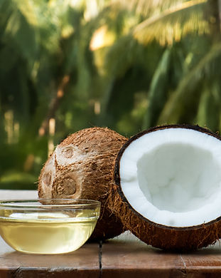 coconut and coconut oil with coconut tre