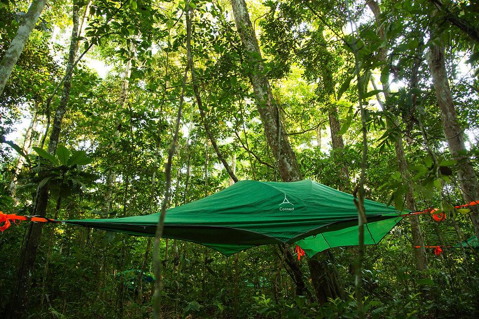 Amazing tree-tent camping site in Yuruma Journeys Madidi National Park