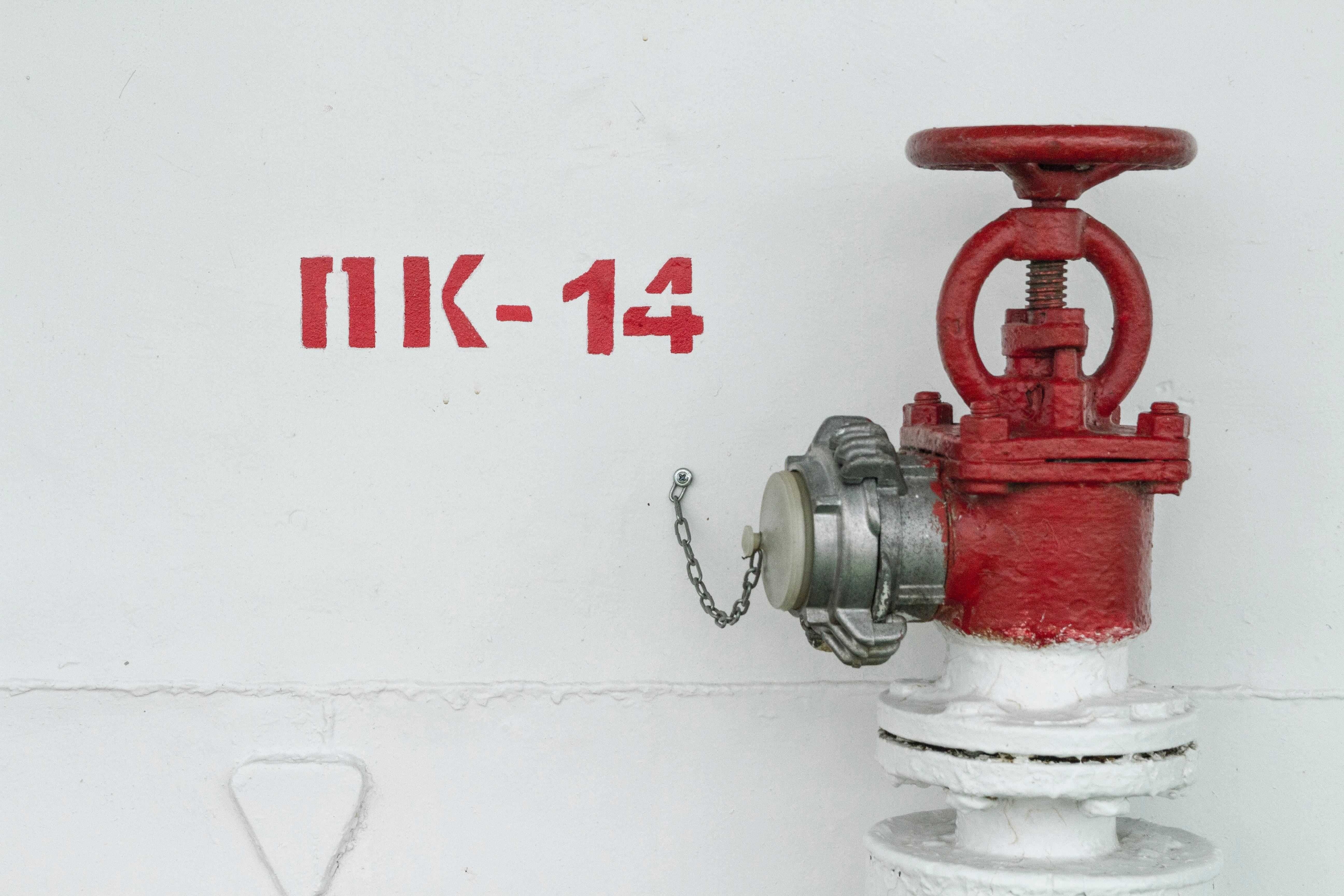 aleksey-shkitenkov-YWRDfkedXvo-unsplash.