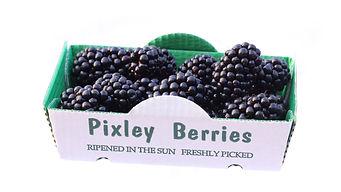 Pixley Blackberries Blackberry juice NFC