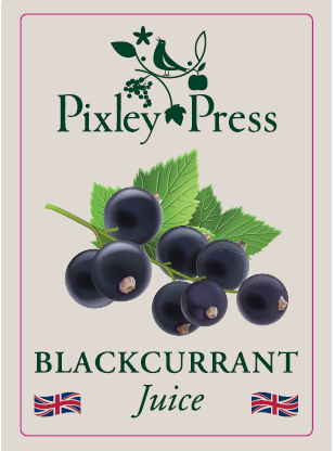 Blackcurrant Juice (12 x 250ml)
