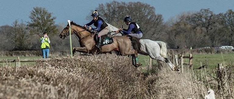 1 x Equestrian Noticeboard Golden Button challenge entry