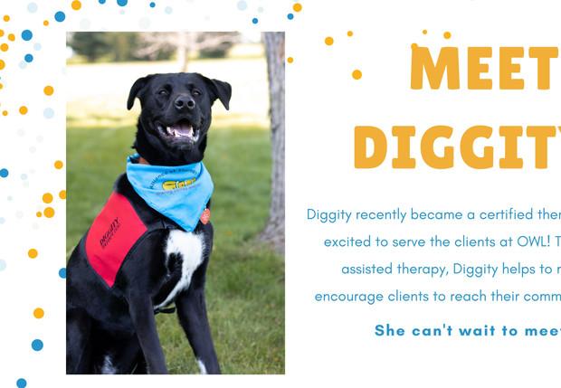 Website Meet Digg (1).jpg