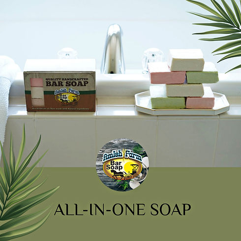RENDERED 6 BAR ALL IN ONE SOAP.jpg