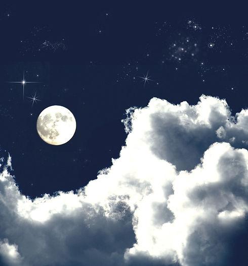 Moonlit%2520Night%2520_edited_edited.jpg