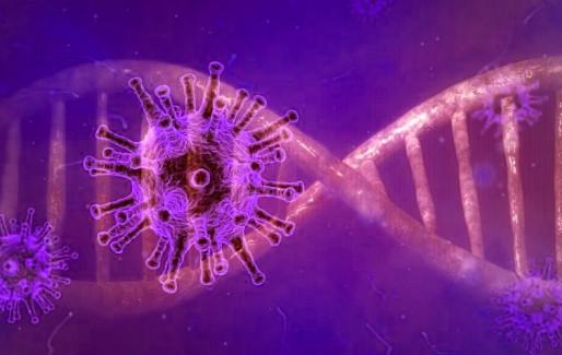 Απίθανη έρευνα: Τι ακριβώς κάνει στο ανοσοποιητικό μας σύστημα ο κοροναϊός όσο εξαπλώνεται